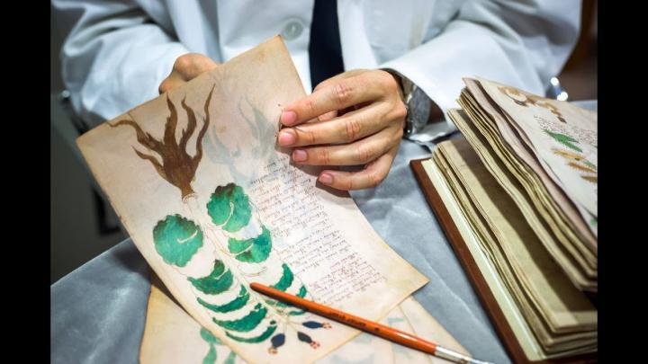 Bí ẩn xuyên thế kỷ: Bản thảo Voynich