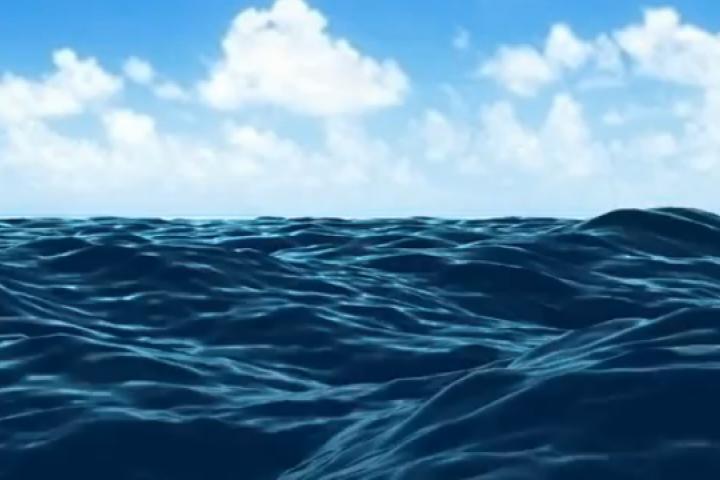 Tàu cá bị đâm chìm và lời khẩn cầu thắt lòng