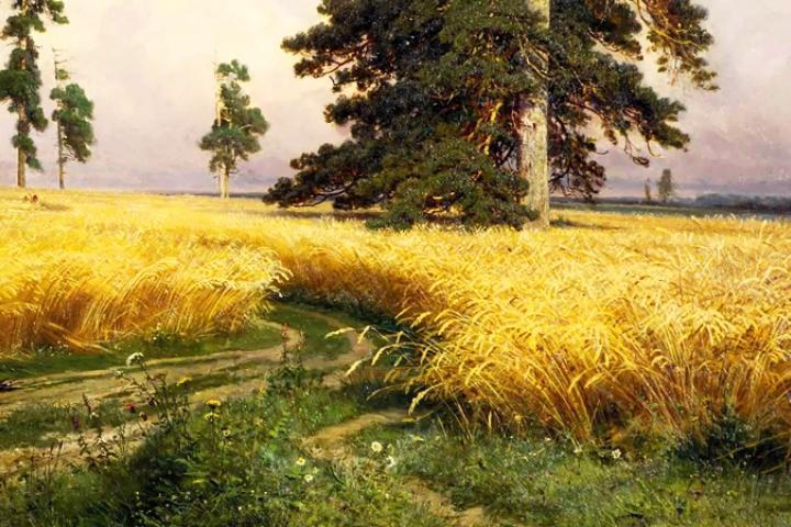 Tam Tự Kinh (bài 10)- Câu chuyện Nguồn gốc của lúa gạo (1)